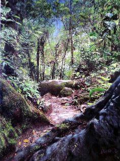 Entrada de uma gruta. Parque Nacional de Itatiaia - RJ. . Pintura Hiperrealista em óleo sobre tela. Autor : Arnaldo Quintella