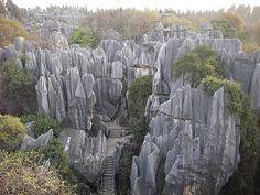 Bosque de piedra en China