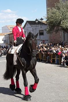 St. Antoni Procession: Animal Blessings in Spain