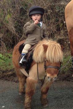 Pony and rider!
