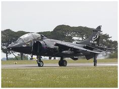 View topic - Culdrose Airday 2014 (Updated with sea fury crash landing ) Wings Etc, Royal Navy, Military Aircraft, Wwii, Air Force, Fighter Jets, Aviation, Army, Choppers