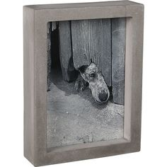Curb Picture Frame | CB2