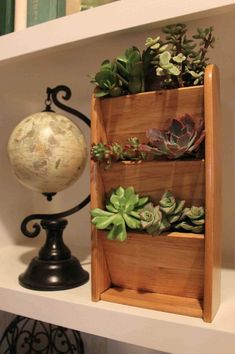 Showcase Gorgeous Succulents with a Letter Rack