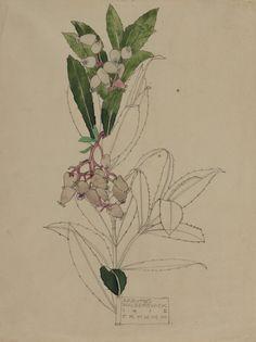 Hunterian Art Gallery Mackintosh collections: GLAHA 41026