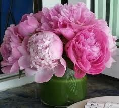 I LOVE peonies. I can almost smell these...