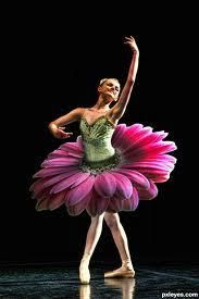 My dream Waltz of the Flowers costume!
