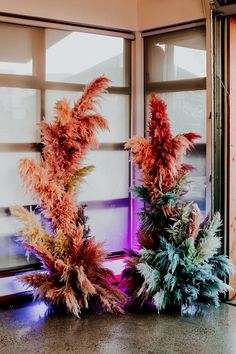 A wedding ceremony with a colorful backdrop. Dried flowers in various colors. Modern wedding style. Pampasgrass dyed colors Wedding Vendors, Wedding Signs, Wedding Ceremony, Our Wedding, Wedding Decor, Floral Wedding, Wedding Colors, Wedding Styles, Wedding Window