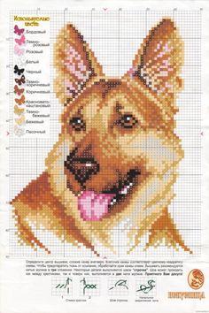 Cross Stitch Needles, Cross Stitch Charts, Cross Stitch Designs, Cross Stitch Patterns, Cross Stitching, Cross Stitch Embroidery, Dog Crafts, Dog Pattern, Cross Stitch Animals