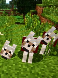Minecraft! Minecraft Wolf, Minecraft Stuff, Video Game Art, Video Games, Minecraft Storage, Really Fun Games, Animal Jam, Nintendo Ds, Lego City