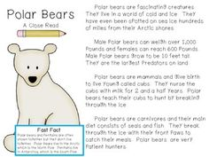 Friends~I put this little close read together to go along with my polar bear unit this week in class.  I am planning on using this in my reading group with my Close Reading Book Marks.    Included in this freebie you will find a nonfiction reading passage about polar bears.