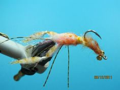 Articulate Ghost Shrimp       Articulate Crayfish   This is an Articulate version of Ghost Shrimp and Crayfish, which I intend to give mor...
