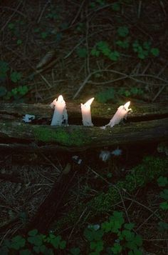 nature holding candles.