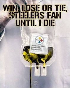 They bleed black & yellow