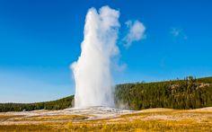 Der berühmte #Geysir #Old #Faithful im #Yellowstone #Park beim Ausbruch © shutterstock