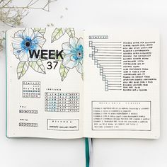 "1,627 Likes, 33 Comments - Federica • Bullet Journal (@feebujo) on Instagram: ""These days  I love this type of layout with 2 days for page because I have more space to write…"""