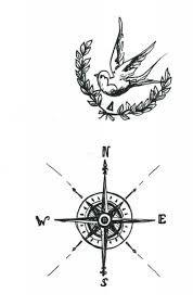 Tatouages roses and recherche on pinterest - Rose des vent tatouage ...