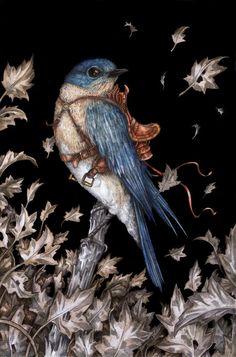 bluebirds para grabar cd