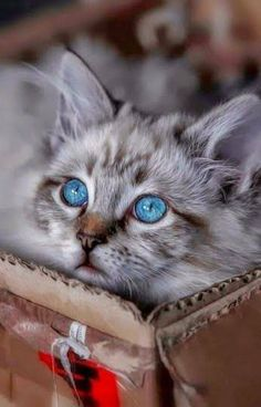 Beautiful little darling 💗💕💕
