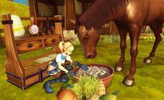 [앨리샤] 함께 달리고 보살피며… '馬과의 감동 교감' - 경향게임스