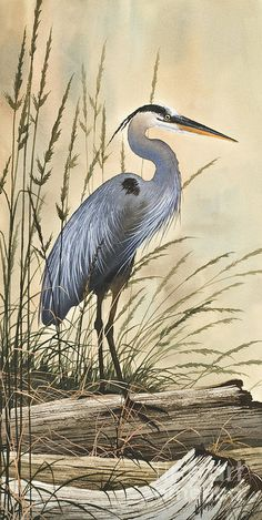 Heron Art Print featuring the painting Nature's Harmony by James Williamson