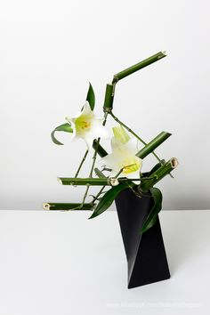 Arrangement made by Ilse Beunen Material: Bamboo, Lily  At a workshop with Els we received very beautiful fresh bamboo to make a New years arrangement. Back home, I couldn't resist to play a little more with the bamboo and this is one of the results. #ilsebeunen #生花 #いけばな #floralart #ikebana #sogetsu #sogetsuikebana #草月 #生け花 #floraldesign #bamboo #Lily