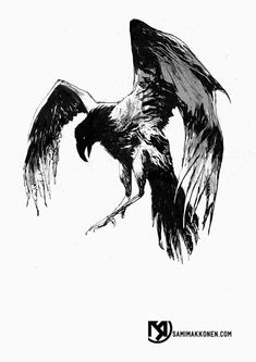 1000+ ideas about Crow Tattoos on Pinterest | Raven Tattoo ...