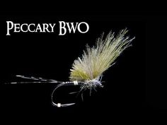 BWO Peccary Dry Fly ~ Quill Doesn\'t cut it.. ~ AndyPandy - YouTube