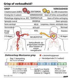 FLU / [Infographics] Griep of verkoudheid? - forum.fok.nl