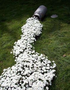 "21 Great Garden Decorating Ideas..this one is so cute with the whole ""spilt milk"" theme."