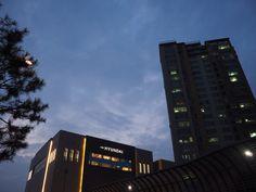 New Hyundai, Department Store, South Korea, Seoul, Broadway Shows, Building, Buildings, Korea, Construction