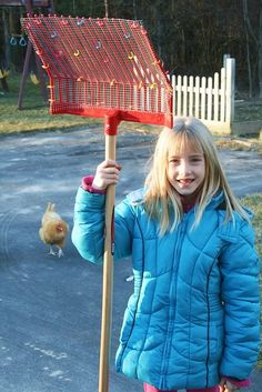 Some great ideas on this blog on chicken keeping