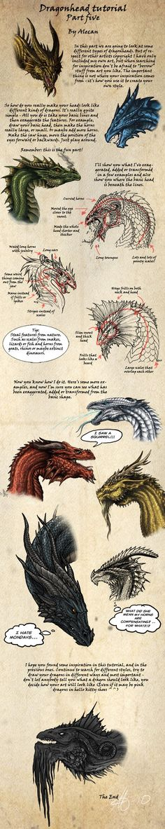 Dragonhead Tutorial part 5 by *alecan on deviantART - Yay now I can figure out how to make my dragons different! Magical Creatures, Fantasy Creatures, Animal Drawings, Art Drawings, Dragons, Drawn Art, Mythological Creatures, Drawing Techniques, Creature Design