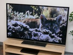 What you need to know about TV power consumption | TV and Home Theater - CNET Reviews