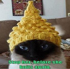 @Christy Polek Crane  Sophie BEWARE!  LOL!  I'm going to knit Jack an eye patch.