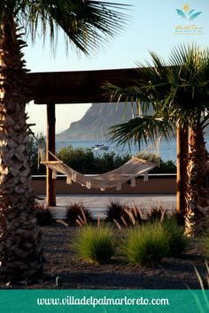 It's National Hammock Day and we have the perfect spot to help you celebrate the dog days of #summer at #Villa del Palmar at the #Islands of #Loreto Like if you think this is a nice place to #relax!