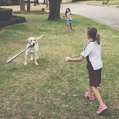 This wiffle ball star. | 39 Photos For Anyone Who's Just Having A Bad Day