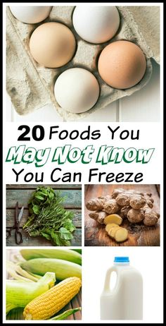 20 Foods you can freeze! Have you ever passed up a great food sale or a bulk price deal because you were afraid the majority of the food would wind up going to waste? You won't believe all the things you can freeze!