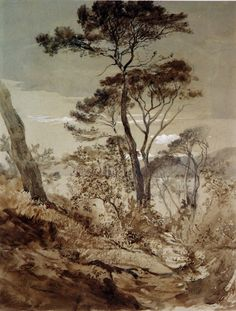 art-centric:  Stone Pines at Sestri John Ruskin, 1845