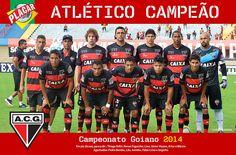 CAMPEÃO 2014