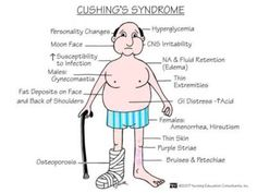 Cushing's syndrome or hypercortisolism.  A syndrome resulting from your body being exposed to cortisol for a long period of time, such as Prednisone.