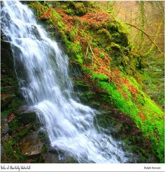 The Birks of Aberfeldy,Waterfall, Aberfeldy Perthshire. Natural Waterfalls, Beautiful Waterfalls, Beautiful Landscapes, Water Photography, Waterfalls Photography, All Nature, Natural Wonders, Nature Photos, Natural Beauty