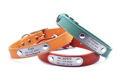 Leather Dog Collar with Personalized Nameplate - 20 Colors