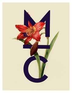 Magro Cardona on Behance . Typography . Graphic Design