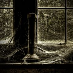 Flashlight in the spiderweb