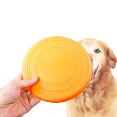 Top selling products 2017 dog catching frisbee clipart disc training events for wholesale