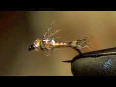 Two Bit Hooker Fly Tying Instructions and Directions - Charlie Craven - YouTube