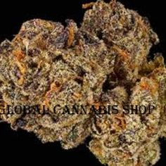 Global cannabis shop, is a one-stop shop that provide quality marijuna around the world.We offer Quality cancer cannabis oil and top shelf marijuana for patients with illness like cancer, pain,insomnia, anxiety,liver problem, epilepsy and more..White Widow,sour Diesel,Hawaii-Skunk,Hindu Kush,afghan kush.call or text 4242347308 website https://globalcannabisshop.net