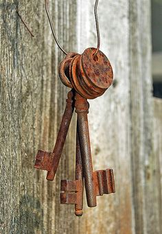 In the novel Shabby Chic at Heart Tara loves to find forgotten treasures like these rusty keys