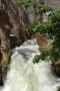 Edesseos (Vodas) river in Edessa town Macedonia Cyprus Greece, Macedonia Greece, Greece Vacation, Greece Travel, Pella Greece, Beautiful Places, Beautiful Pictures, Beautiful Scenery, Myconos
