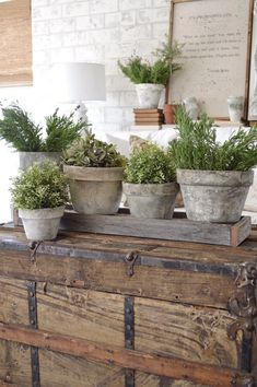 Thank you for all of your sweet comments about my painted pots! I'm so excited to show you how I completed this easy and budget friendly project. I started off with these terra cotta pots tha… Recycled Planters, Galvanized Planters, Outdoor Planters, Concrete Planters, Diy Planters, Tall Planters, Succulent Planters, Modern Planters, Flower Planters